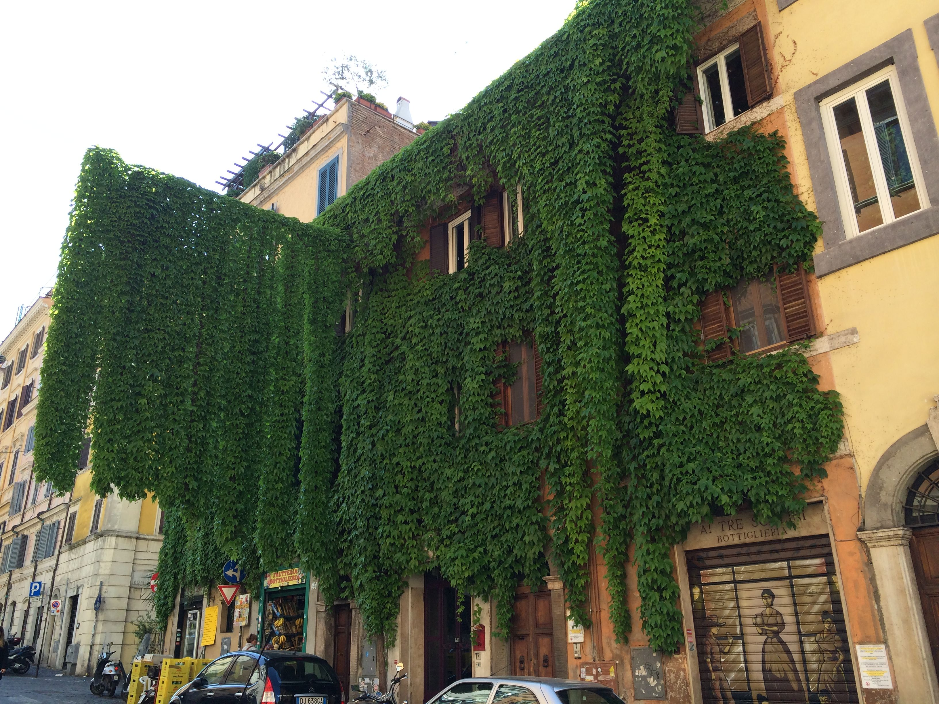 Groengevel Rome 1
